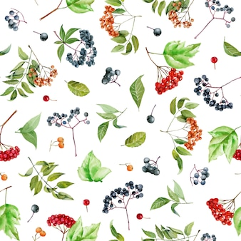Watercolor viburnum, rowan and elderberry branches seamless pattern