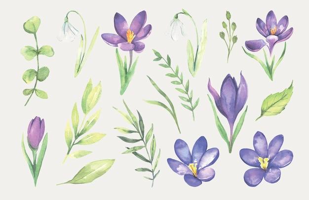 Акварель фиолетовый весенний цветок