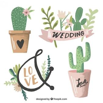 Watercolor wedding cactus Free Vector