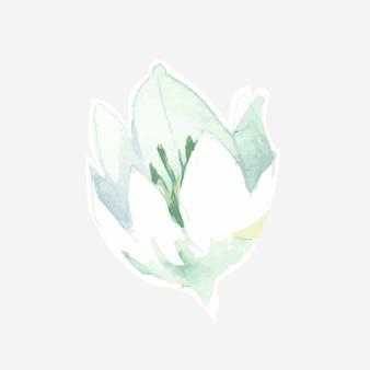 水彩の白いユリの手描きのデザイン要素