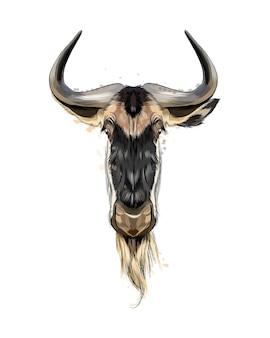 Watercolor wildebeest head portrait on white
