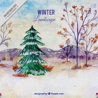 Акварельный фон зимы с рождественской елки