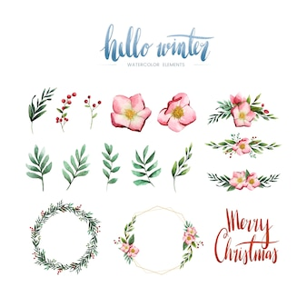 Watercolor winter bloom and elements vector