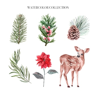 수채화 겨울 장식 그림, 식물과 사슴으로 구성.