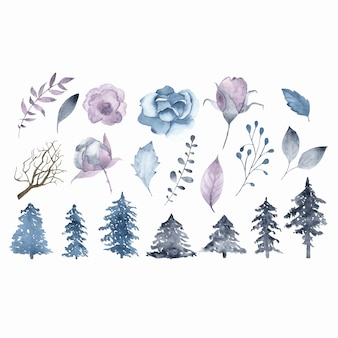 Watercolor winter flowers brunch leaves fir tree isolated