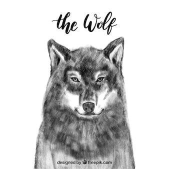 수채화 늑대 배경