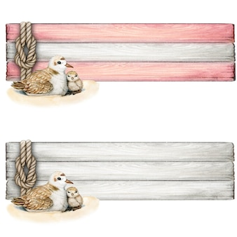 Watercolor wooden sailing knot and plover nest