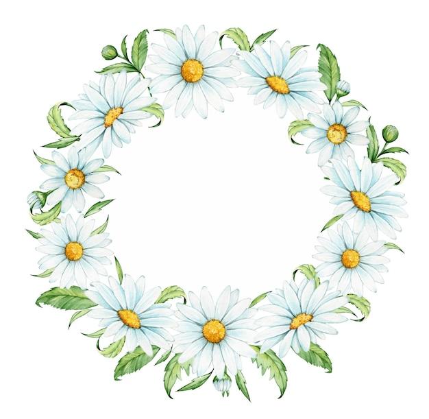 カモミールと葉で作られた水彩画の花輪、春のクリップアート、孤立した背景に、。