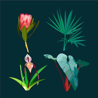 Watercolour beautiful exotic flowers and leaves