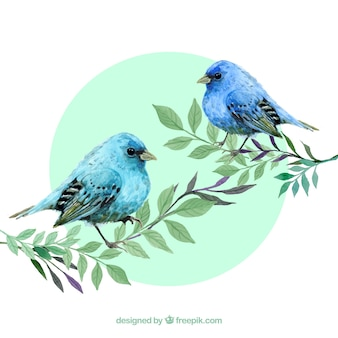 Watercolour blue birds