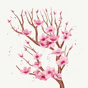 Watercolour branch of cherry blossom flower