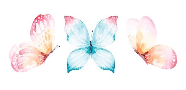 비행 나비의 수채화 컬렉션입니다.