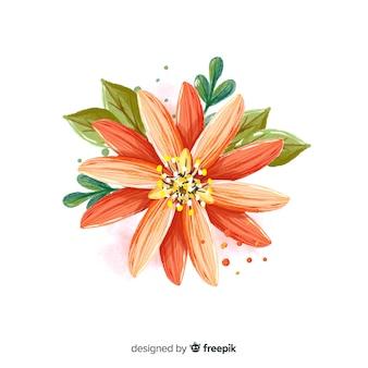 水彩サンゴ花フラットレイアウト