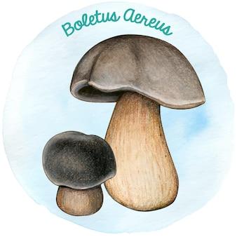 Watercoor рисованной гриб подберезовик