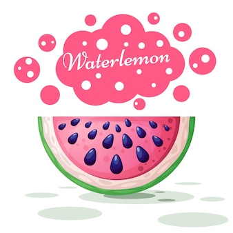 Watermelon cute illustration