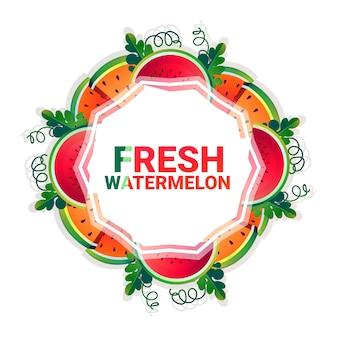 수 박 과일 화려한 원 복사 공간 흰색 패턴 배경 위에 유기