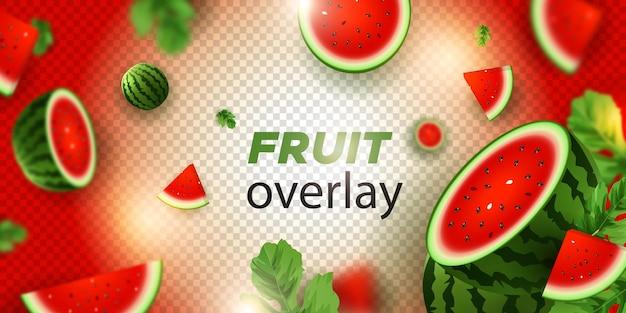 투명 배경에 수박 과일