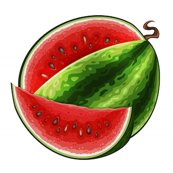 Watermelon icon isolated
