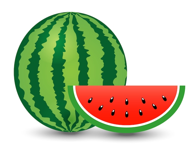 Watermelon and piece on white background