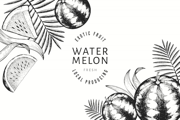 Watermelons, melons and tropical leaves design template.