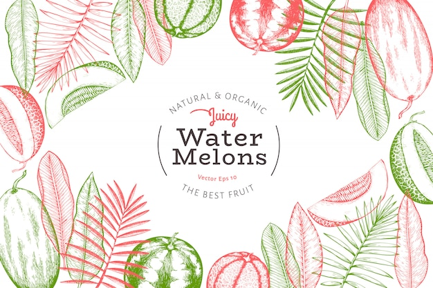 Watermelons, melons and tropical leaves design template