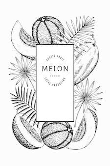 Watermelons, melons and tropical leaves  template. hand drawn  exotic fruit illustration. engraved style fruit frame. vintage botanical banner.