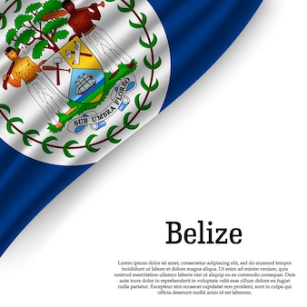 Waving flag of belize on white