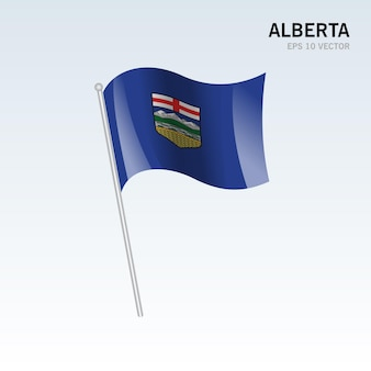 灰色の背景に分離されたカナダのアルバータ州の旗を振る
