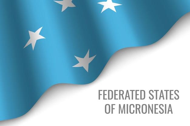 ミクロネシア連邦の旗を振る
