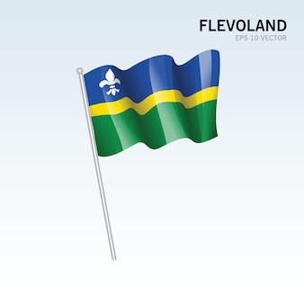 회색 배경에 고립 된 네덜란드의 flevoland 지방의 깃발을 흔들며