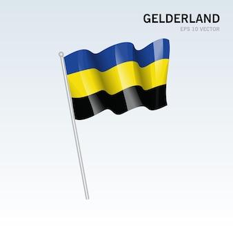 회색 배경에 고립 된 네덜란드의 gelderland 지방의 깃발을 흔들며