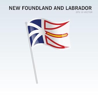 회색 배경에 고립 된 캐나다의 뉴펀들랜드와 래브라도 지방의 깃발을 흔들며
