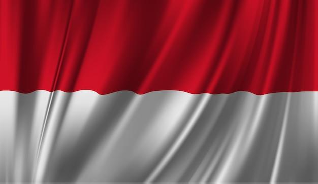 モナコの旗を振っています。