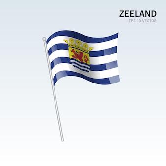 회색 배경에 고립 된 네덜란드의 Zeeland 지방의 깃발을 흔들며 프리미엄 벡터