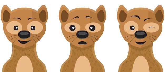 Weasel face expressions illustration set