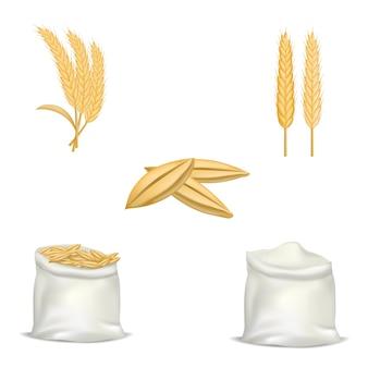 大麦小麦ホップモックアップセット。 webの5大麦小麦ホップモックアップのリアルなイラスト