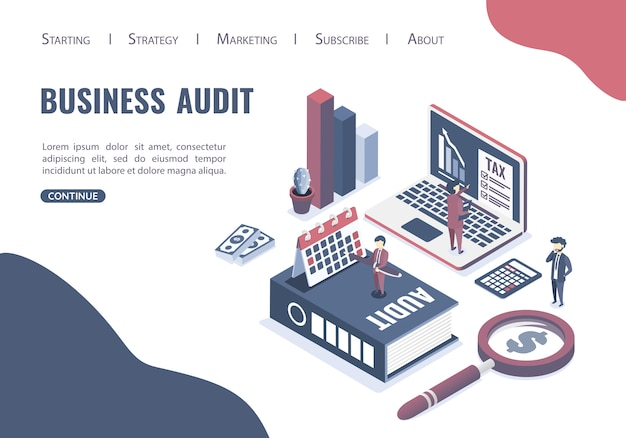 Web template with the concept of business auditing.