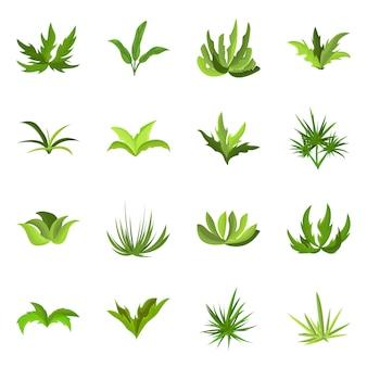 庭と草のシンボルの孤立したオブジェクト。 webの庭と低木のストックシンボルのコレクション。