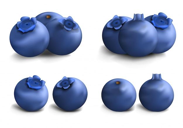 ブルーベリーのアイコンを設定します。 webデザインのためのブルーベリーベクトルアイコンの現実的なセット