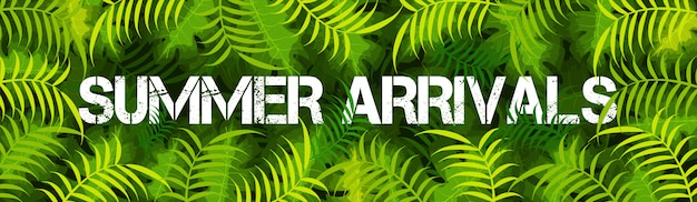 Website banner design with text summer arrivals