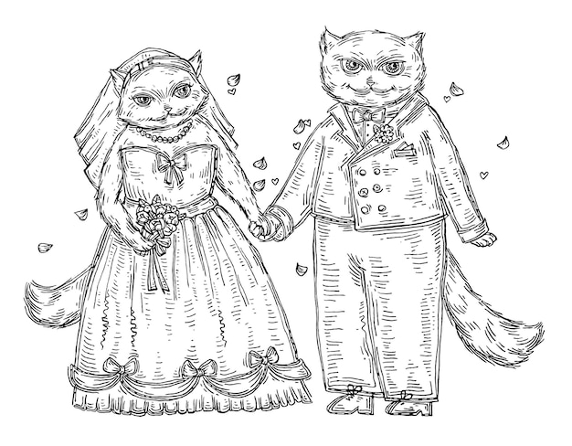 웨딩 커플 고양이입니다. 빈티지 벡터 블랙 해칭 그림 흰색 배경에 고립. 티셔츠에 손으로 그린 디자인 요소