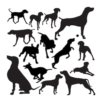 Weimaraner dog animal silhouettes.