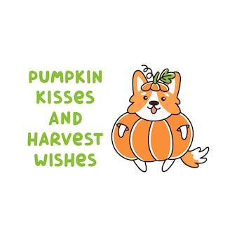 Welsh corg dog pumpkin inscription pumpkin kisses and harvest wish