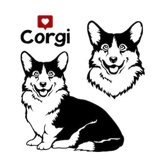 Welsh corgi cardigan dog vector illustration on white background