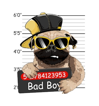 ウェールズのフレンチブルドッグ犯罪者。写真を逮捕します。マグショット写真。警察のプラカード、警察の顔写真。