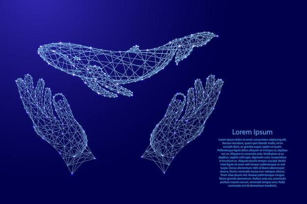 クジラが浮かんでいて、2本の手を握って、未来的な青い多角形の線から手を保護しています。