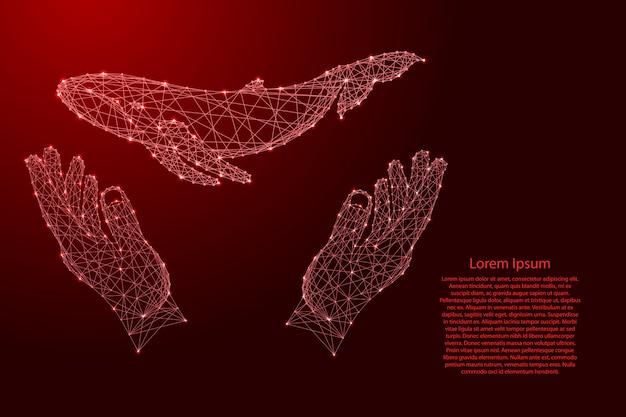 クジラが浮かんでいて、2つの手を握って、未来的な多角形の赤い線から手を保護しています。