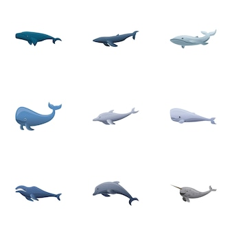 Whale set, cartoon style