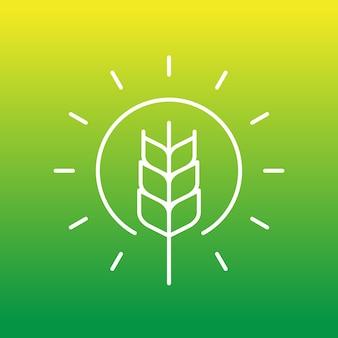 Значок линии пшеницы и солнца, вектор