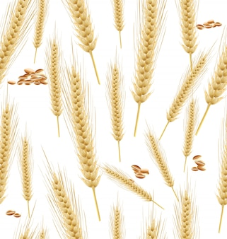 Wheat background seamless